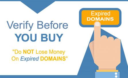 如何购买国外带有反向链接的过期域名?