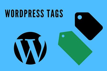WordPress不支持中文TAG标签出现404的解决方法