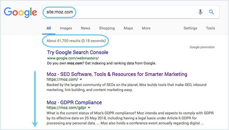 如何查看网站在搜索引擎中的索引